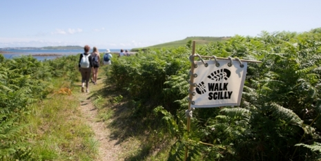 Read More About Walk Scilly 2019